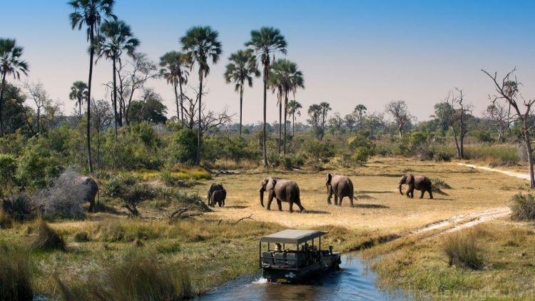 Du lịch sinh thái
