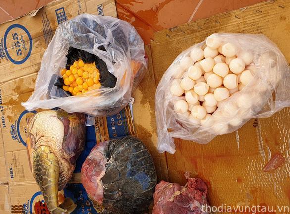 Trứng vích và trứng vích non thu giữ tại nhà bị cáo Cúc - Ảnh: Đ.H.